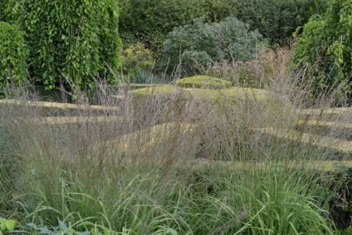 Haseley Court, grasses, focal point