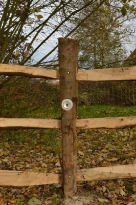 The landscaper added a hidden downlighter to this post-and-rail fence