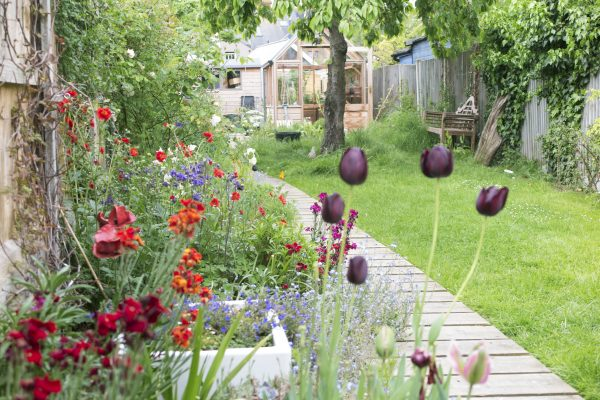 Planning tips for a long thin garden