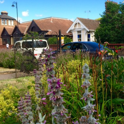 Find out how gardens make people better