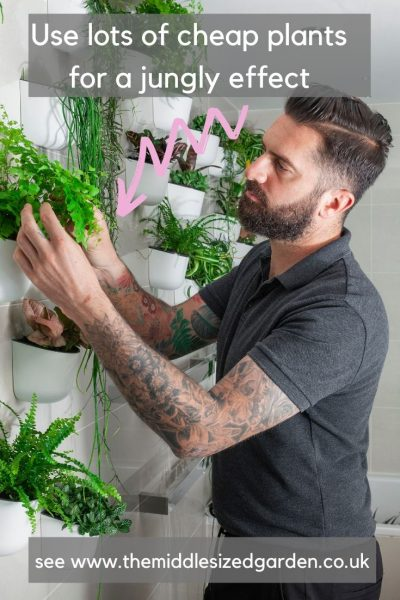 Use lots of inexpensive houseplants