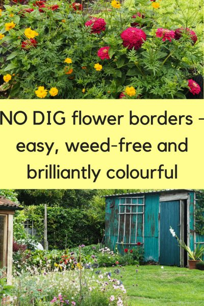 No dig flower borders are easy, weed-free and brilliantly colourful