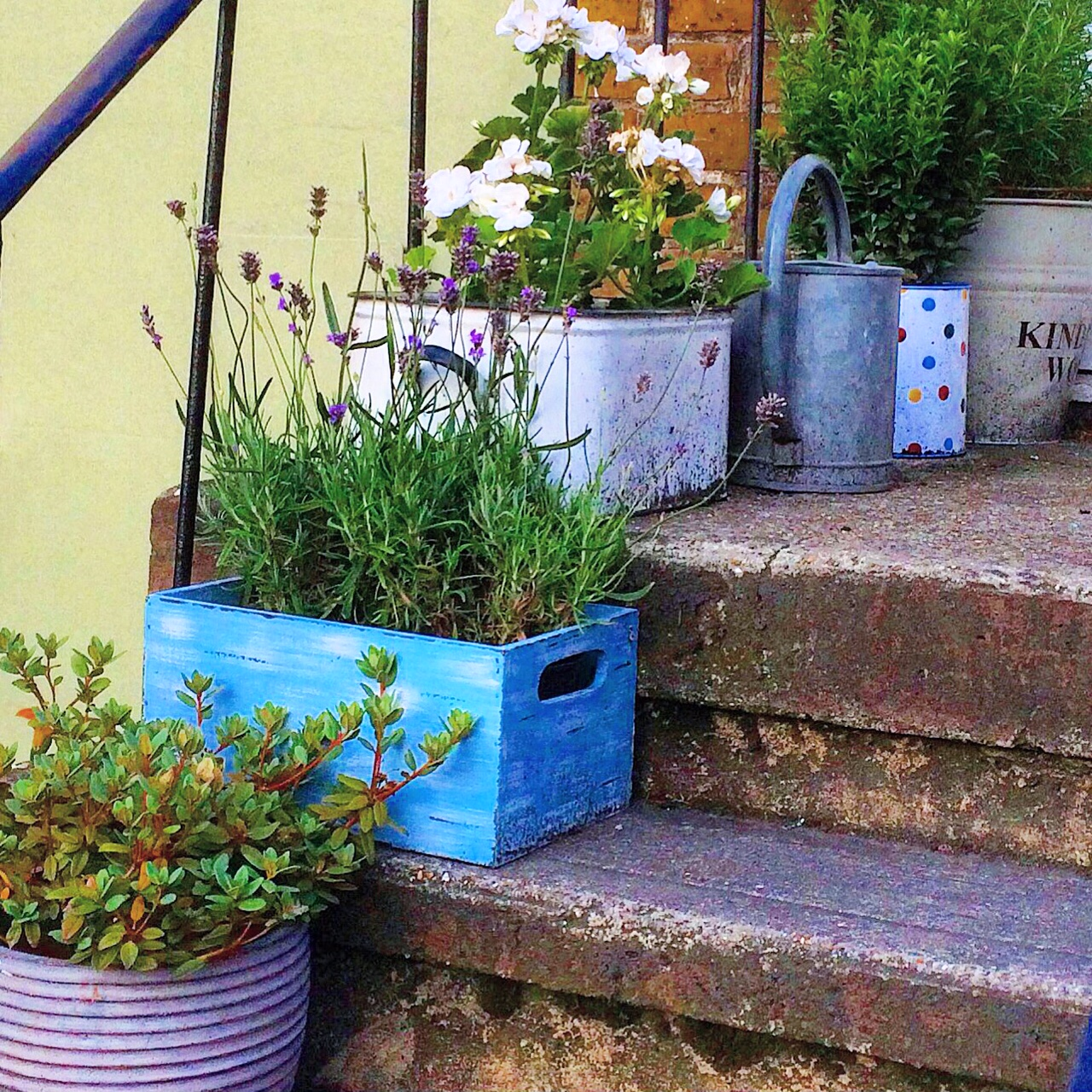 Mother S Day Container Garden Ideas: Love Your Pots! 25 Inspiring & Practical Ideas For