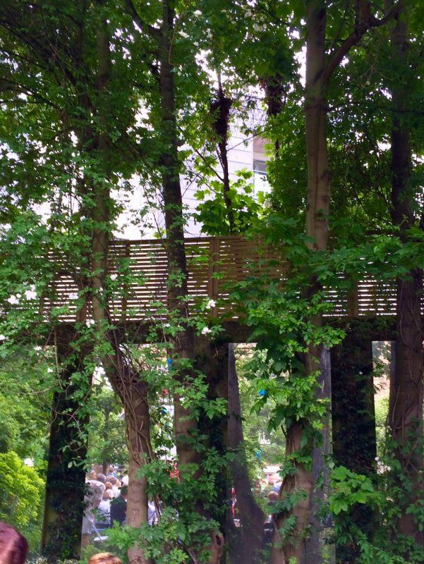 Wall, trellis, trees and mirror - privacy in a London garden