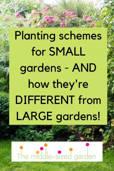 Small garden planting schemes and ideas