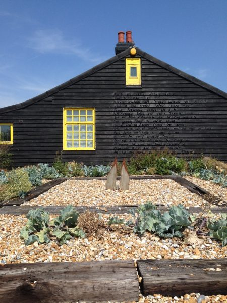 Driftwood beds and sea kale