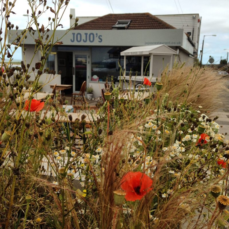 Jo-jo's grasses, seedheads and poppies