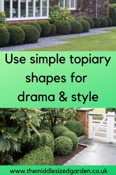 Easy topiary for dramatic effects