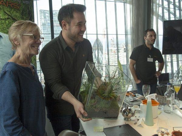 Prize-winning terrarium
