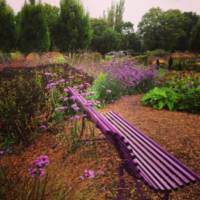 Use colour to echo the planting.