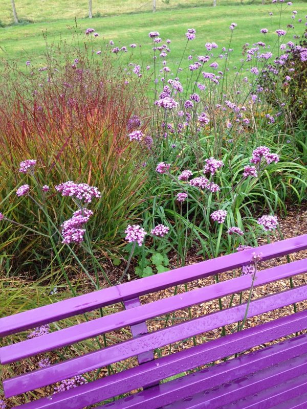 Sussex Prairie Gardens