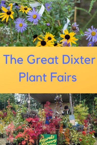 Great Dixter Plant Fairs