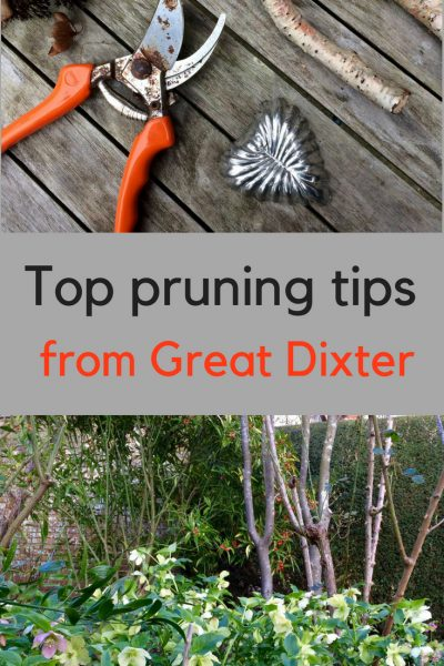 Top pruning tips from Great Dixter
