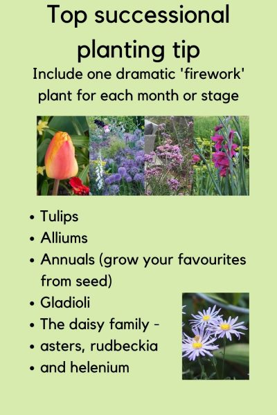 Top successional planting tips