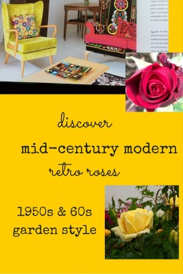Stylish tips for upcycling mid-century modern furniture - and the roses to go with it.