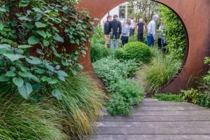 Middle of garden Ana Sanchez-Martin