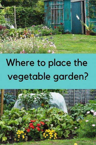 Where to place the vegetable garden? #gardening #smallgarden