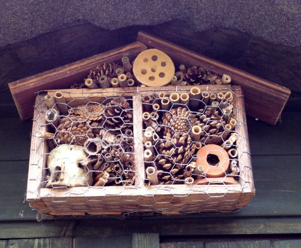 Hand-made bug hotel