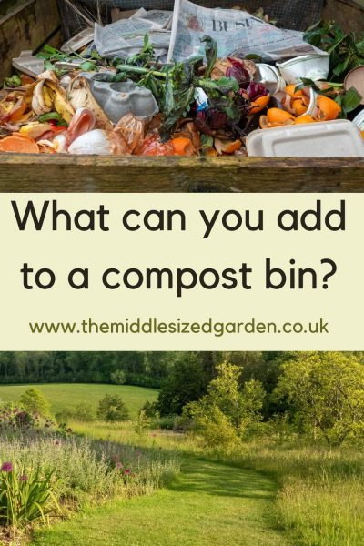 What to add to a compost bin