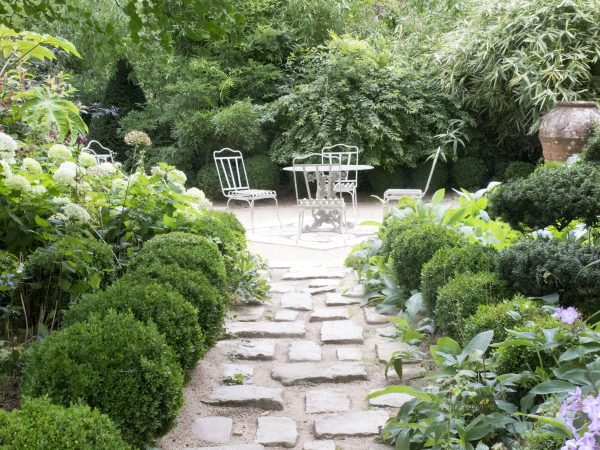 Create a private terrace in the middle of lush planting