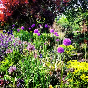 Government secrets garden