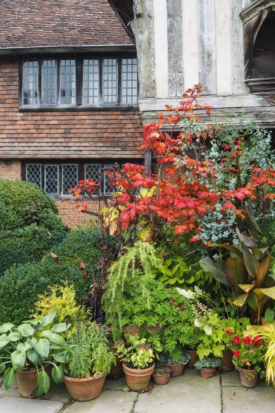 Great Dixter House & Gardens during the autumn plant fair