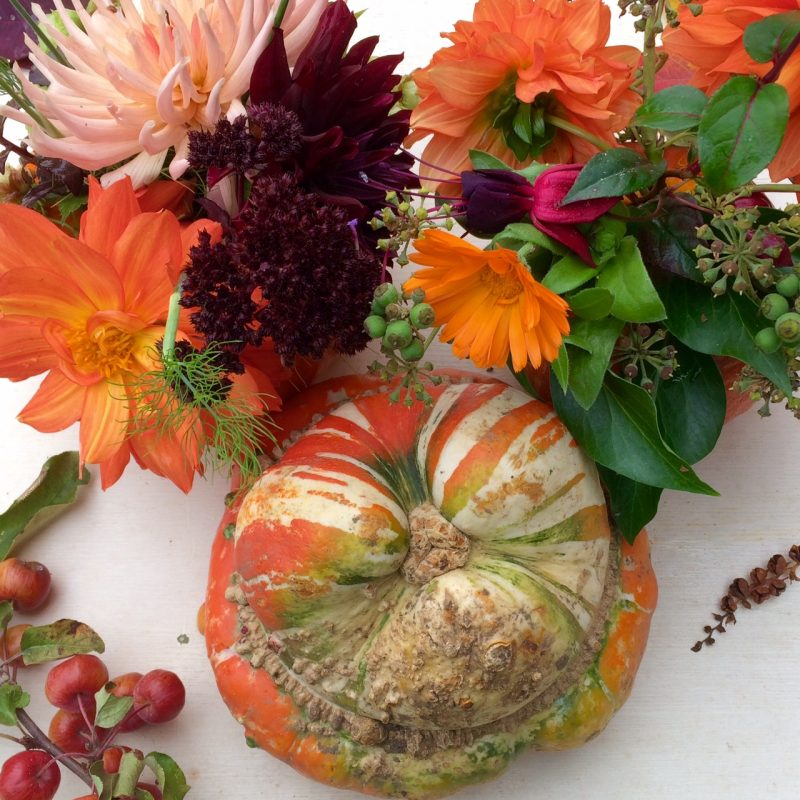 Elegant winter squash decorating ideas