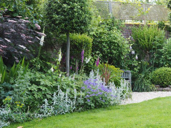 June border in an English garden