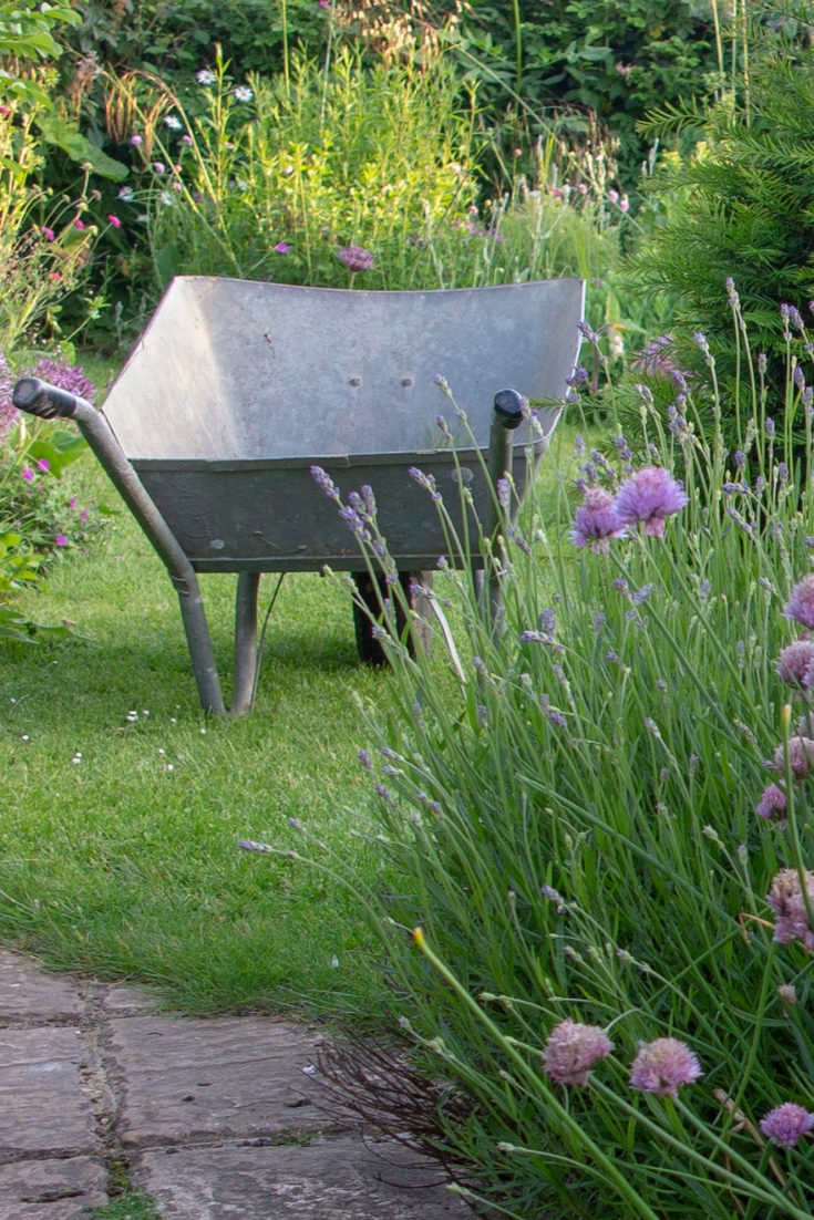 How to prevent knee and back pain from gardening