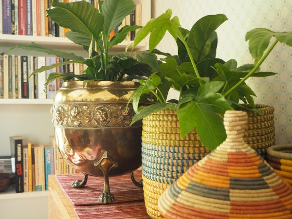 Baskets used as indoor planters