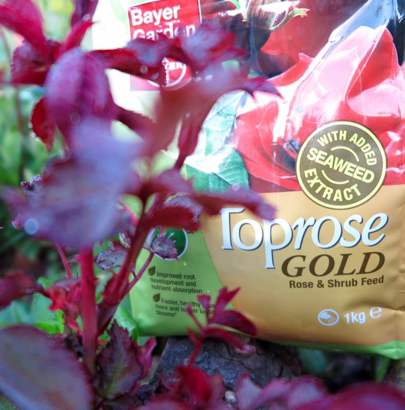 Toprose Gold granular fertiliser