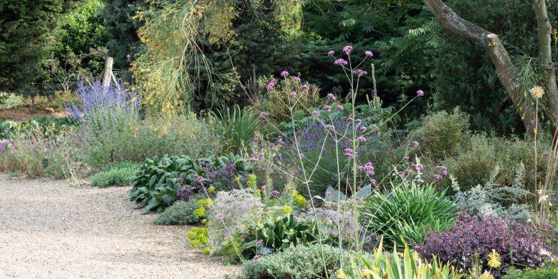 How do you make a dry garden?