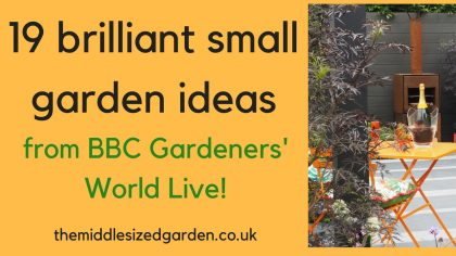 19 brilliant small garden ideas from BBC Gardener's World Live