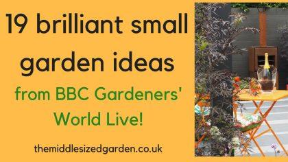 19 brilliant small garden ideas from BBC Gardener's World Live