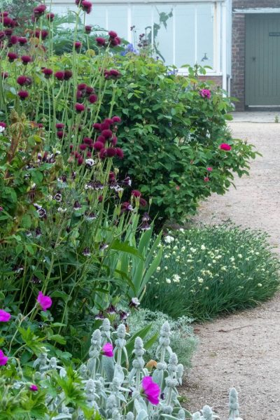 Pick light airy plants throughout the border