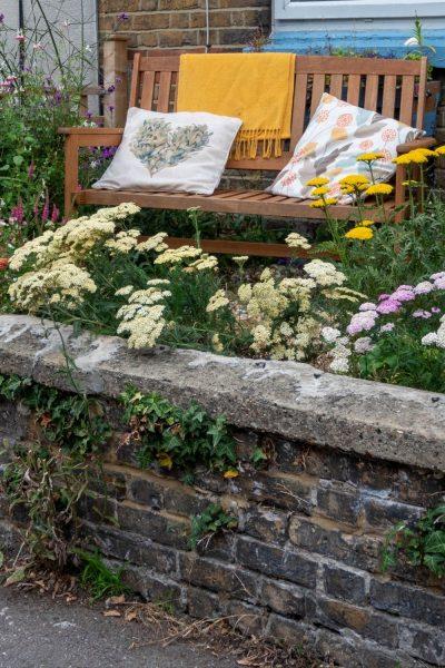Sunny south-facing front garden