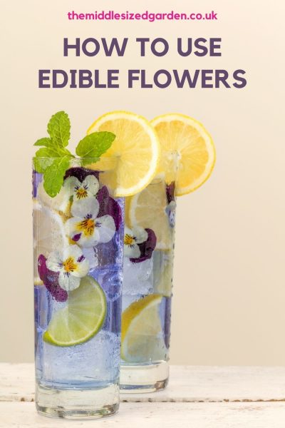 tips for using flowers in cocktails