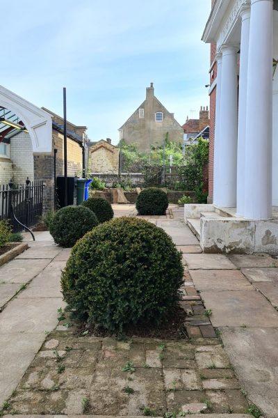 Yew balls in a stone front garden