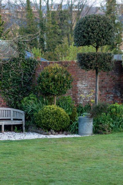Low maintenance topiary