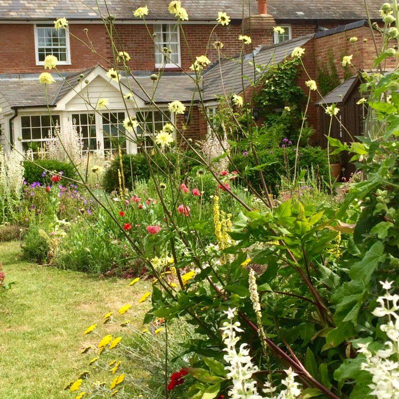 Choose a word as a theme for your garden.
