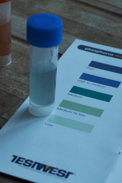 Find out which nutrients your soil lacks with a soil test