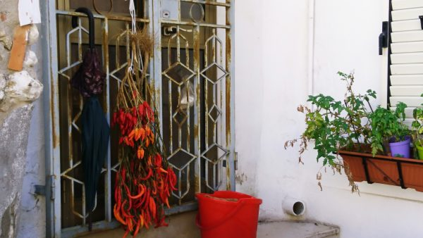 Chillies hanging out to dry outside many houses