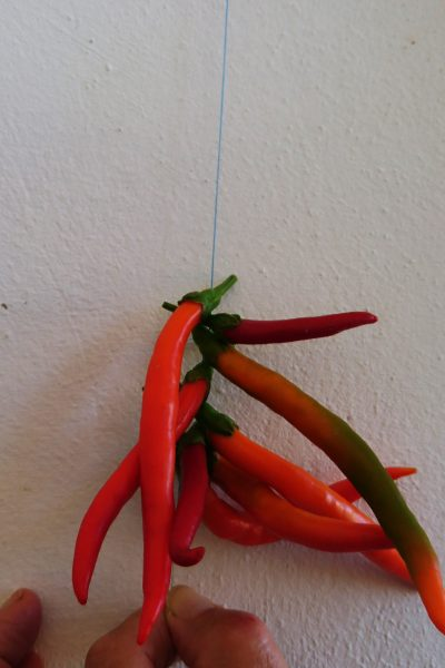 Alternate chillies to dry them quicker