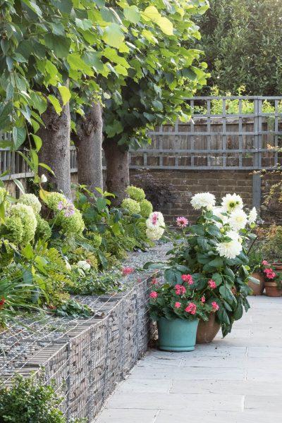 Wire gabions in garden