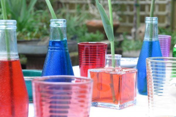 Fill old bottles with food dye colouring and water