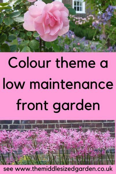 Pink themed low maintenance garden