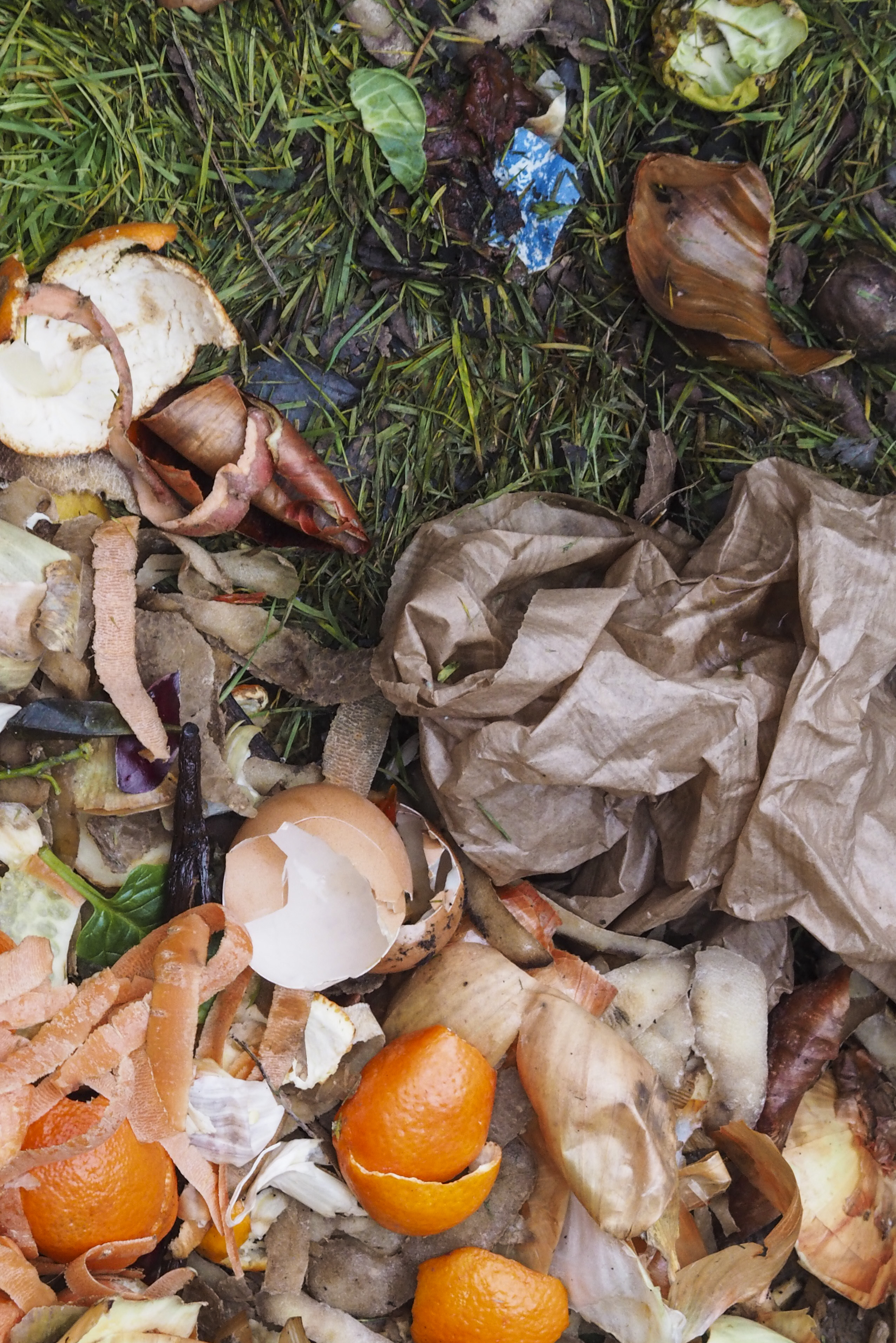 Choose the right composting method for your personality and lifestyle