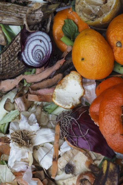 compost pinterst closeup