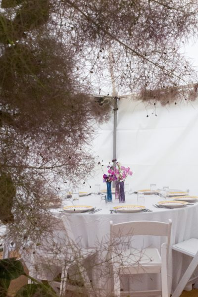 Tree clippings for party decorations