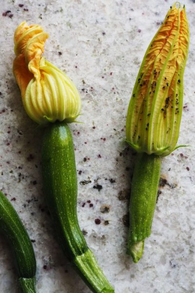 Companion planting to help reduce the use of chemicals #sustainableliving #garden
